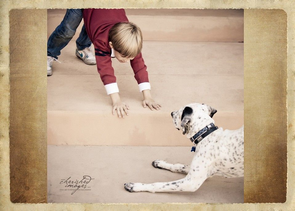 cherished-images-pet-photography-06