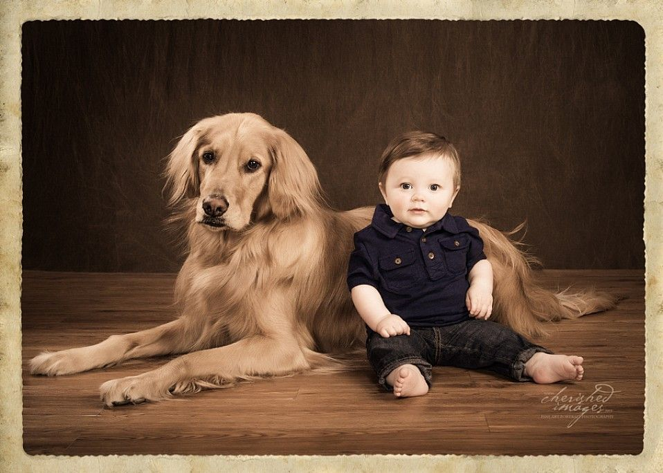 cherished-images-pet-photography-10