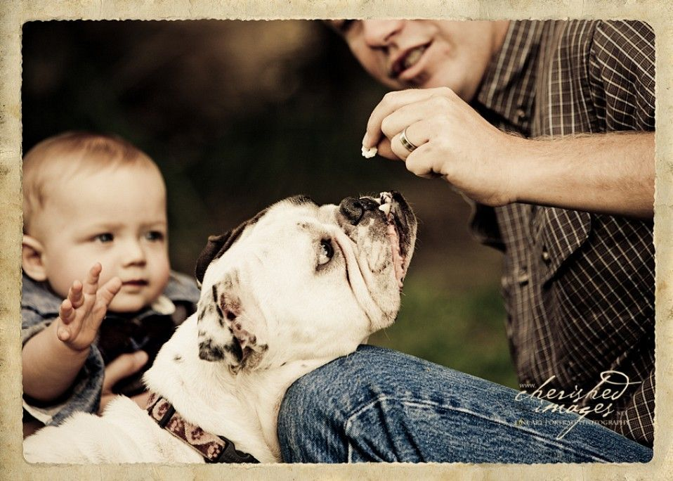 cherished-images-pet-photography-19